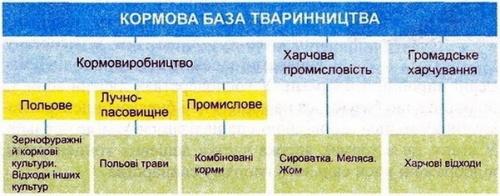 Склад кормової бази тваринництва