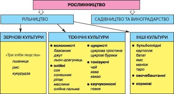 Галузева структура рослинництва