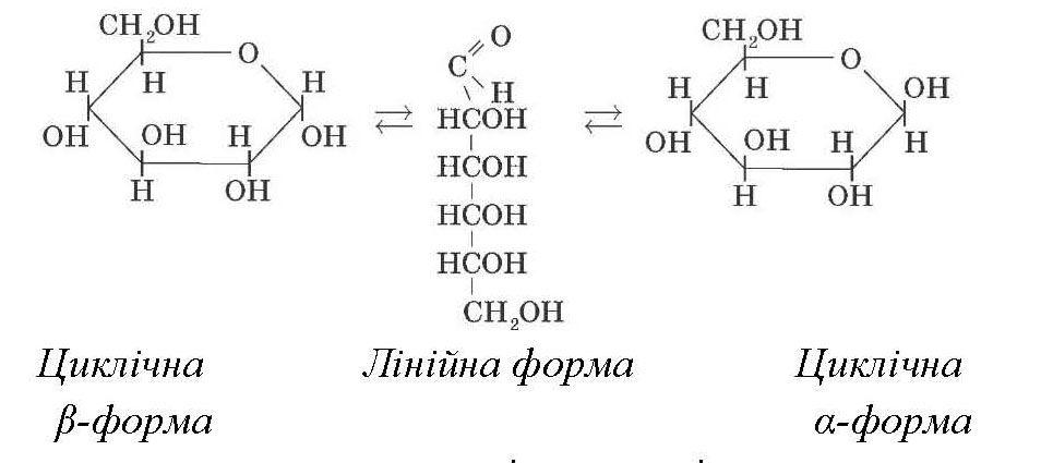 Лінійна та циклічні форми глюкози