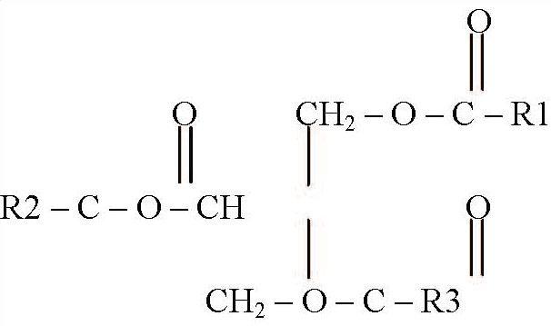 Схема будови молекули жиру
