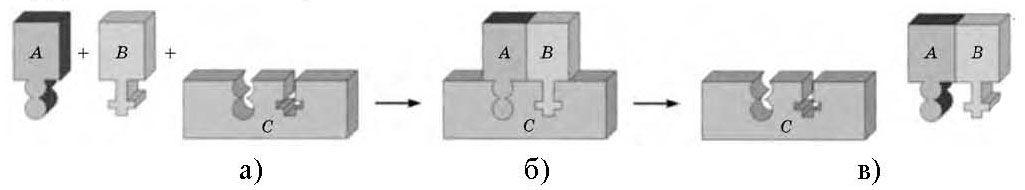 Схема ферментативної реакції