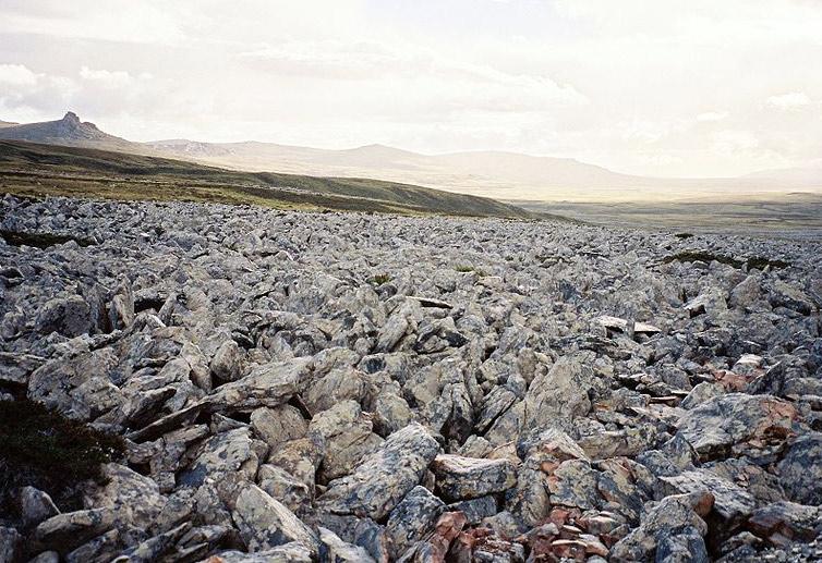 Камяна річка на Фолклендських островах
