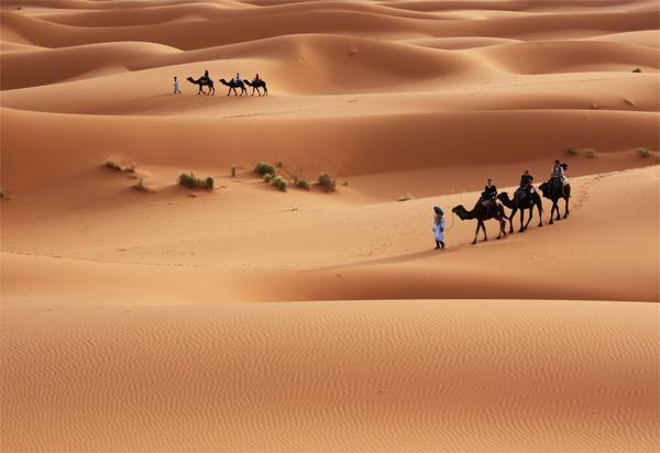 В пустелі Сахара